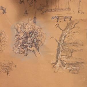Tree studies.